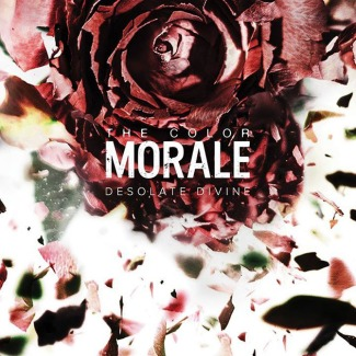the-color-morale-desolate-divine-cover